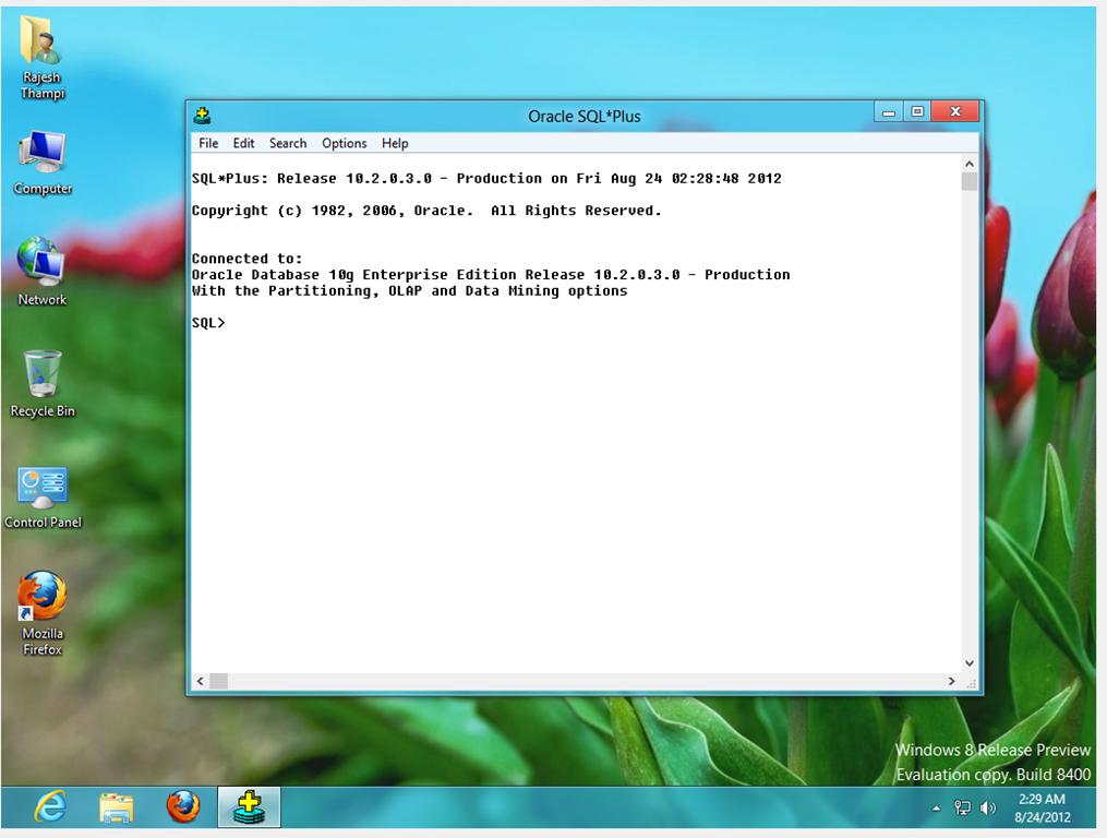 oracle database 10g  for windows xp 32-bit