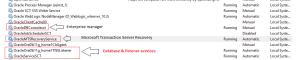 Oracle default Services